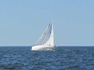 Morgan 30 sailboat heeling