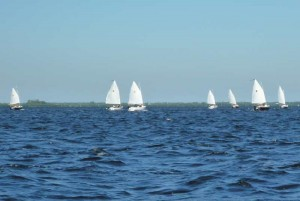 Sun Cat Racers Sailing Upwind
