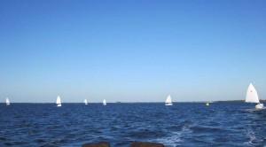 Sun Cat Fleet