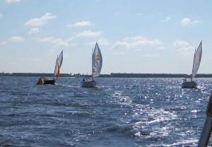 Sun Cats Turning Upwind